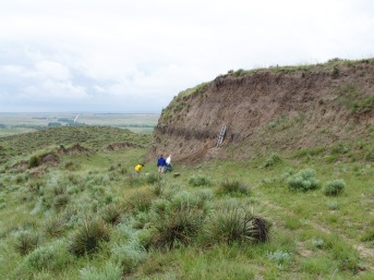 Brady soil Marin-Spiotta